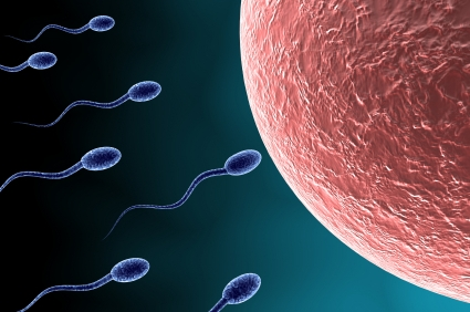 IVF the next step